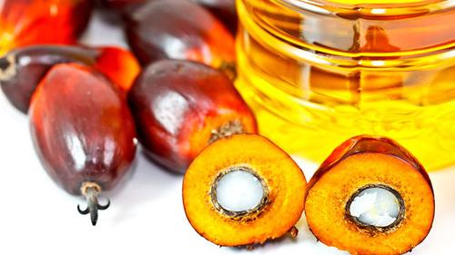 Olio di Palma: bocciata nostra proposta per etichettatura, le lobby brindano